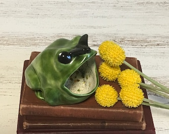 Vintage ceramic frog scouring pad holder kitchen mid century dish handmade retro fly funky gift repurpose craft planter decor