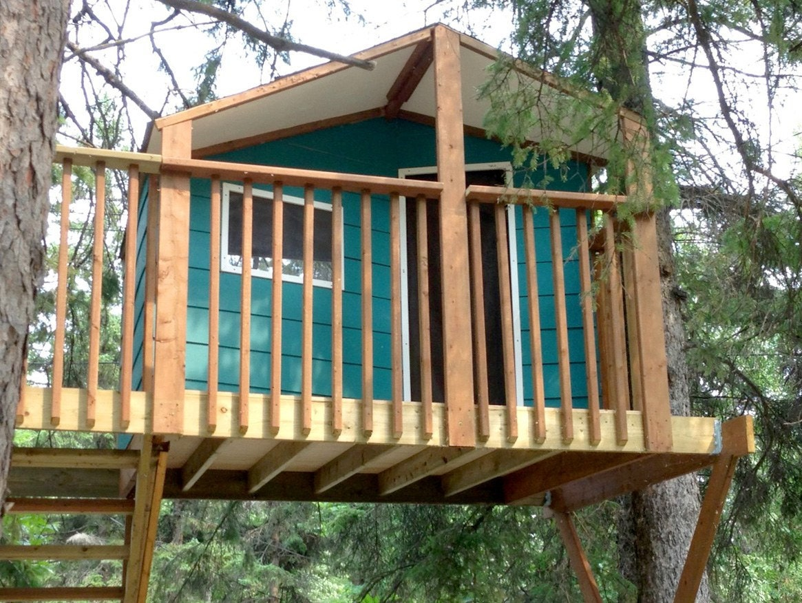Zelkova treehouse diy plans to fit two trees for One tree treehouse plans