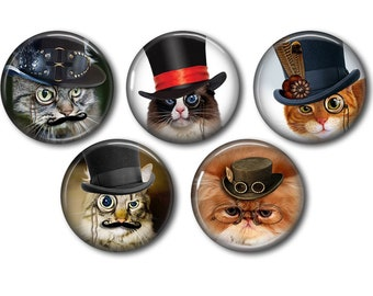 Lot 5 resin craft, round cabochons, after 20 or 25mm cat Steampunk 02