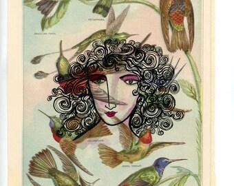 A Peaceful Garden, Birds, Garden, Hummingbirds