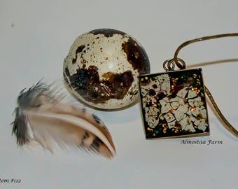 Quail Eggshell Necklace #112