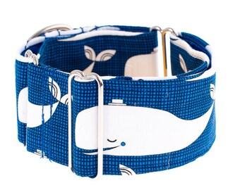 Martingale collar, martingale dog collar, martingale, dogs,dog collars,