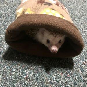 Hedgehog Snuggle Sack/Pouch Two Colors (including hedgehog patterns!)