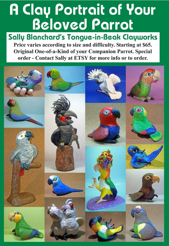 Special Order an Individual One-of-a-Kind Clay Caricature Portrait Sculpture of YOUR Parrot from Sally Blanchard's Tongue-in-Beak Clayworks