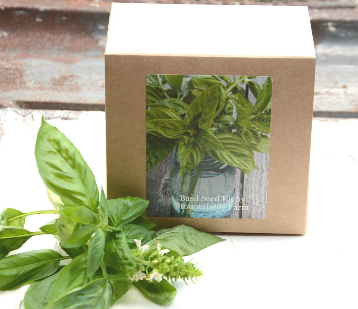 Organic Indoor Herb Garden Kit Sweet basil seed kit diy kit garden kit basil seeds with zoom workwithnaturefo