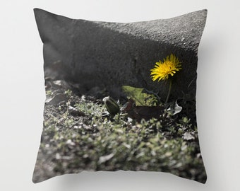 Yellow Dandelion against a Curb Pillow Urban Floral Photograph, Home Decor Pillow Cover 18x18, Floral Fireworks 4