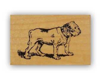 English Bulldog standing, mounted rubber stamp, military, marines mascot, USMC Crazy Mountain Stamps #4