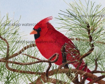 cardinal painting-cardinal watercolor-cardinal print of original-winter bird-bird art-red cardinal-bird painting-bird watercolor