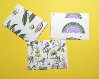 Notecard Set- Vintage Science (Biology) Set