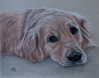 """Custom Dog Drawing, From Picture, custom pet drawing, Custom dog Pastel, charcoal drawing, pet sketch, personalized, Golden Retriever, 8x10"""""""