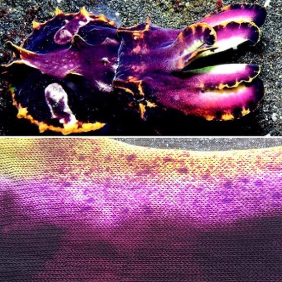 Flamboyant Cuttlefish Sock Blank, speckled cephalopod theme indie dyed merino nylon yarn