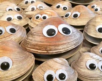 Smiling Googly- Eyed Clams Fun Clams Sea Shell