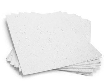 """10 White Sheets of Wildflower Plantable Seed Paper - 8.5 x 11"""" - 85lb - Handmade - Rustic - Crafting"""