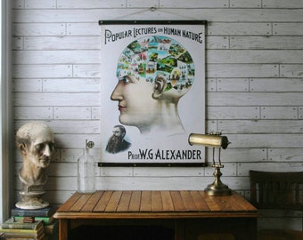 Phrenology Chart / Vintage Pull Down Chart Reproduction / Canvas Fabric Print / Oak Wood Poster Hangers with Brass Hardware / Wall Hanging
