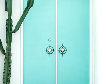 Blue Midcentury Door with Cactus of Palm Springs