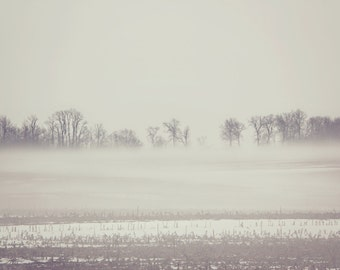 Afternoon Fog Color Photo Print { brown, field, rainy, trees, misty, landscape, sky, white, wall art, macro, nature & fine art photography }