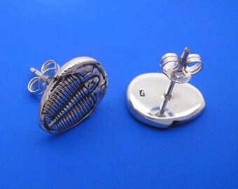 Silver Trilobite Stud Earrings , Hand Made Solid Silver