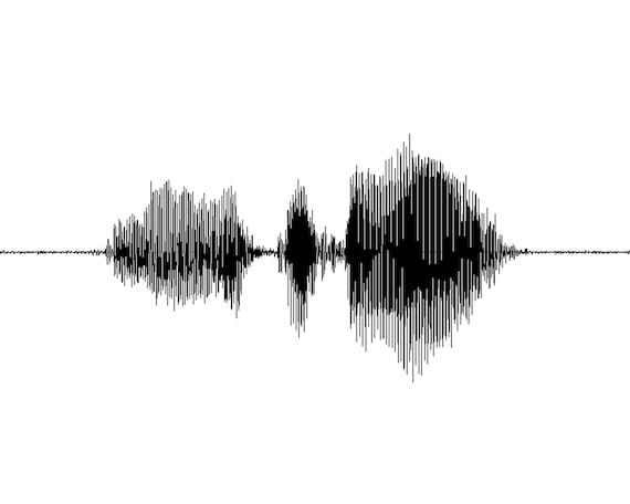 Heartbeat Line Art : Custom tattoo art voice design heartbeat