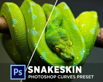 Photoshop Curves Preset - Snakeskin | Use as PS Resource, Color Pop for Photo Editing & More