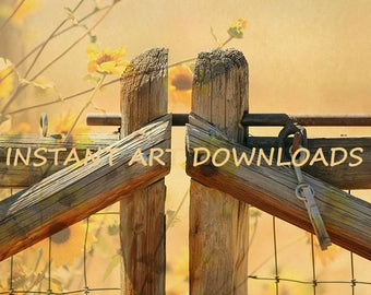 Country Fence Flowers Orange Yellow Digital Download Photo Printable Oversized Instant Art Wall Decor Rural Farmhouse Flowers Texture Photo