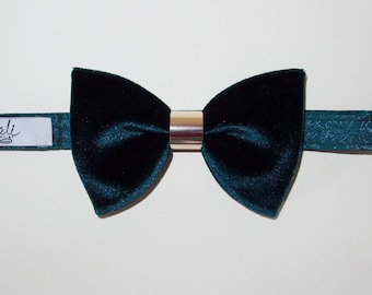 bow tie with ring