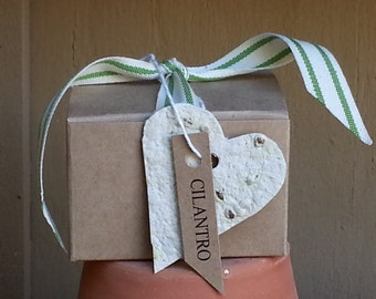 Tiny heart herb garden kit, Cilantro seeds, herb seed paper, indoor herb seed kit, organic herbs , plantable paper hearts gift for grandma