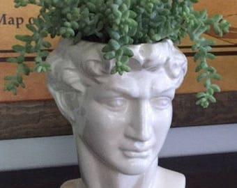 Planter, house plant, head pot, head planter, Drain hole,  head, statue of David, Michelangelo, bust, white, garden decor, unique