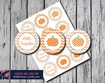 Little Pumpkin Birthday Party Circles Tan and Orange