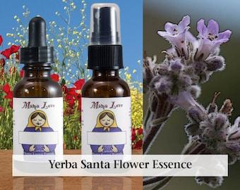 Yerba Santa Flower Essence, 1 oz Dropper or Spray for Releasing Held back Emotions, Holy Herb