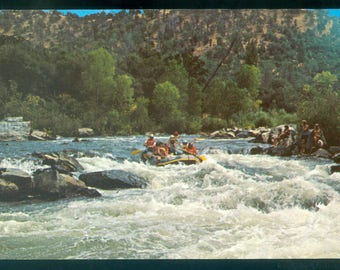 Rafting on the American River Coloma California Undated Photo Postcard
