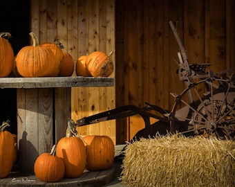 Pumpkin Fall Display Print