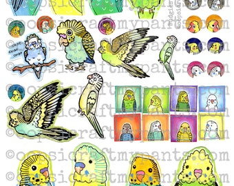 Budgies Collage Sheet - Budgie Clip Art - Parakeet Clip Art - Printable Sticker - Clip Art - Printables - Instant Download