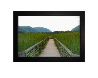 Digital Print: Marsh Entrance - Garrison, NY