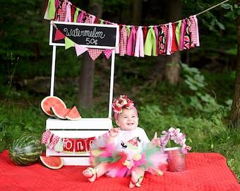 Watermelon tutu, watermelon birthday tutu, First Birthday, watermelon cake smash, watermelon birthday, ants watermelon, watermelon bow