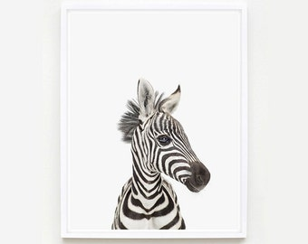 Baby Animal Nursery Art Print. Baby Zebra Little Darling. Safari Animal Wall Art. Animal Nursery Decor. Baby Animal Photo.