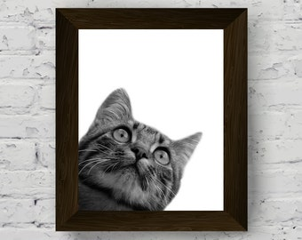 pet portrait, black and white cat photography, animal print for nursery, wall art prints, kids room poster, instant digital download