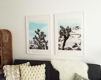 Joshua Tree, Joshua Tree Photography, Desert Wall Art, Palm Springs
