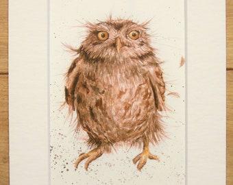 Little Owl Bird Print, Cute Animal Nursery Decor - Original Vintage Book Print, Mounted/ Matted Ready for Framing