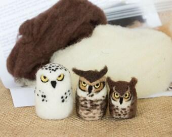 Needle Felted Owls Kit