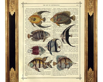 Fish Picture Taxidermy Sea Natural History - Vintage Victorian Book Page Art Print Steampunk