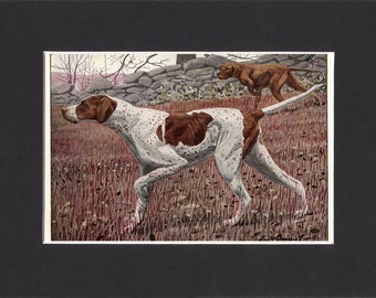 Pointer Print 1919 Vintage Dog Print by Louis Agassiz Fuertes Small Print of a Signed Painting -  Mounted with Mat Pointer Dog