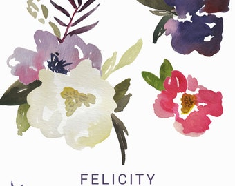 Felicity watercolor graphics