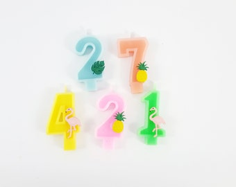 Tropical Flamingo  Birthday Number Candles