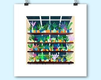 Little Plants, square Giclee print, 21 x 21cm