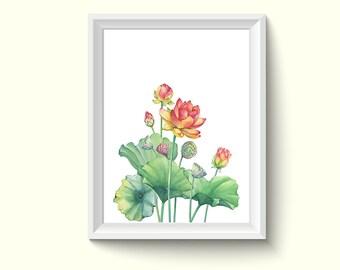 Lotus Flower Watercolor Painting Poster Art Print P480