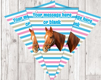 BP123 horse personalised flag bunting x 10 flags with ribbon