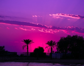 Modern Sunset, Purple Sunset Print, Abstract Sunset Photo, Sunset Photo, Palm Tree Sunset, Palm Tree Photography, LA beach print, sea photo
