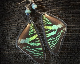 Earrings! Real Butterfly Wings + Copper Wire + Ancient Roman Glass Beads + Sterling Silver - Jewelry Art Handmade Northwest Tribal Festival