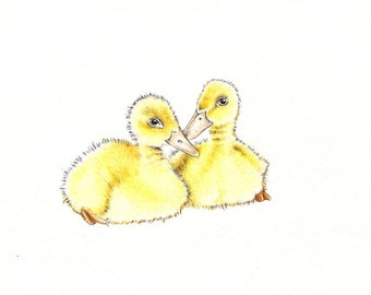 """Pair of Duckies art print of an original drawing available 5x7"""" or 8x10"""""""