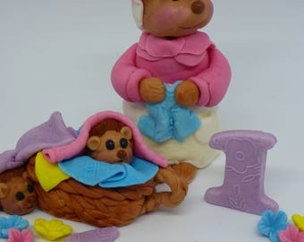 Peter Rabbit Mrs.Tiggy Winkle,Personalised,Birthday,Christening,Baby Shower,Edible,Handmade,Cake Toppers